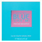 Antonio Banderas Blue Seduction for Women Eau de Toilette femei 100 ml