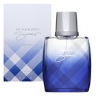 Burberry Summer For Men 2011 Eau de Toilette bărbați 100 ml