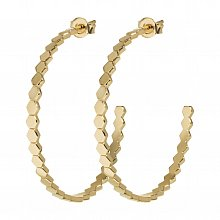 Cluse Earrings CLJ51008