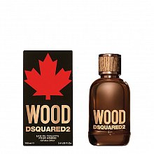Dsquared2 Wood Eau de Toilette for men 100 ml