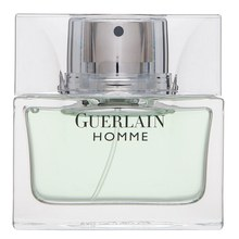 Guerlain Guerlain Homme Eau de Toilette for men 50 ml