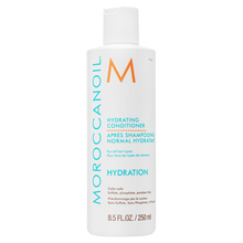 Moroccanoil Hydration Hydrating Conditioner conditioner for dry hair 250 ml
