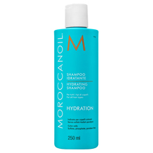 Moroccanoil Hydration Hydrating Shampoo shampoo for dry hair 250 ml