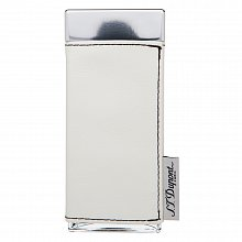 S.T. Dupont Passenger for Women Eau de Parfum femei 100 ml