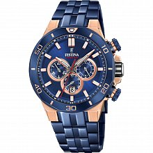 Watch for men Festina 20452/1