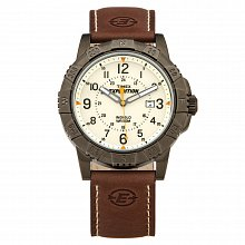 Watch for men Timex T49990