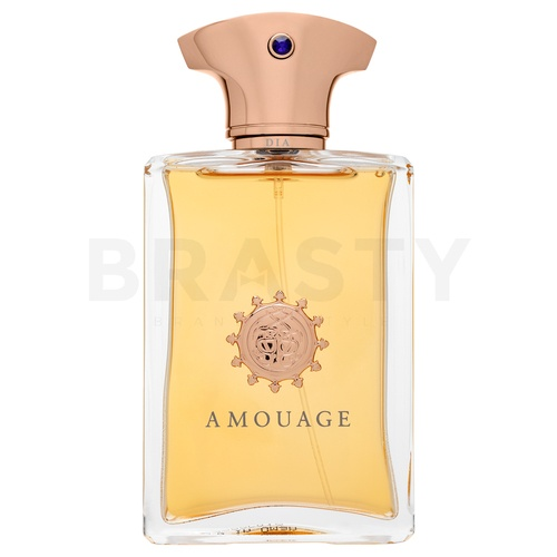 Amouage Dia Eau de Parfum for men 100 ml