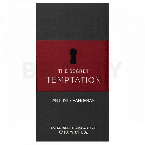 Antonio Banderas The Secret Temptation Eau de Toilette für Herren 100 ml