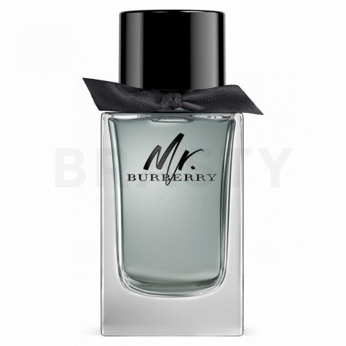 Burberry Mr. Burberry Eau de Toilette für Herren 50 ml